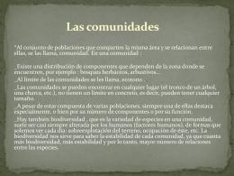 PowerPoint 4