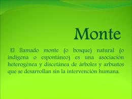 Presentacion Ambiente -Monte