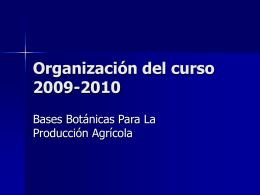 Organización del curso 2005-2006