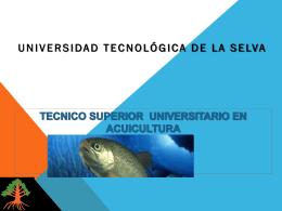 Conoce - Universidad Tecnológica de la Selva