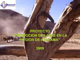 """proyecto """"promocion de la eib en la region de atacama"""""""