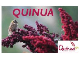 01.- cultivo quinua