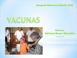 vacunas academia americana pediatria 2010