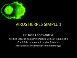 dermatitis por contacto - Expertos en Alergología e Inmunología