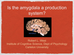 Is the amygdala a production system? - ACT-R