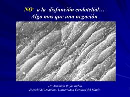 NO a la Disfunción Endotelial Dr. Armando Rojas Rubio