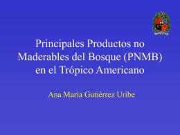 (PNMB) en el Trópico Americano