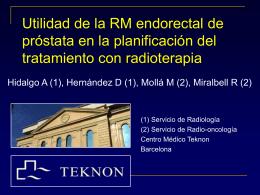 rm_endorectal_bilbao_2004