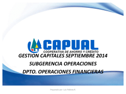 Informe Gestión de Capital Sept. 2014