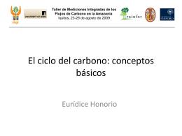 1b. El ciclo del carbono