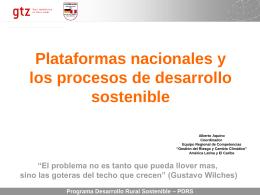 PN y los procesos de desarrollo sostenible [ppt