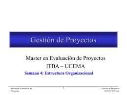 MEP-Sema4-Estructura_Organizacional