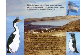Présentation PowerPoint - Maman et Moi en Argentine