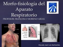 El aparato respiratorio - juan luis sanfuentes 2015