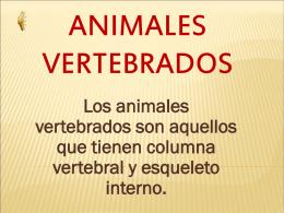 vertebrados