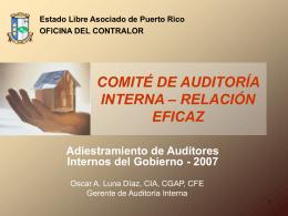 Adiestramiento de Auditores Internos del Gobierno 2007