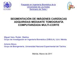 METODOLOGÍA - Universidad de Los Andes