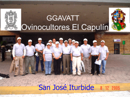 GGAVATT Ovinocultores El Capulín San José Iturbide