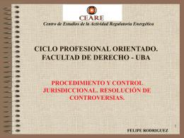 Procedimiento y Control Jurisdiccional