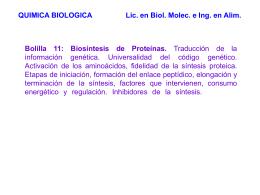 Transcripción y traducción de un gen eucariota