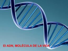 """Unidad 4 """"El ADN"""""""