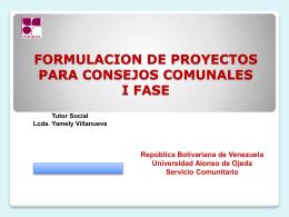 formulacion de proyectos para los consejos
