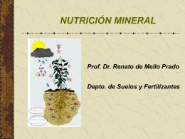Slide sem título - Nutricao de Plantas
