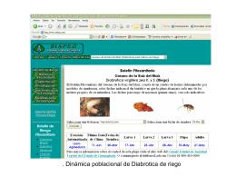 Anexos - intranet fgp
