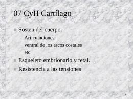 07 CyH Cartílago