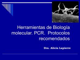 Herramientas de Biología molecular. PCR