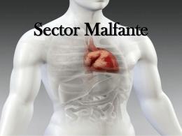 Sector Malfante Caso Clinico