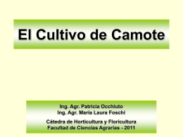 Diapositiva 1 - Campus Virtual Facultad de Ciencias Agrarias
