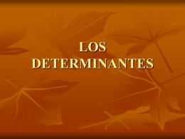LOS DETERMINANTES (107520)