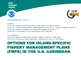options for island-specific fishery management plans (fmps) in the us