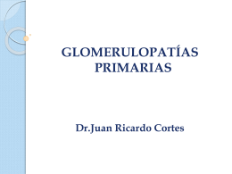 Glomerulopatías Primarias final
