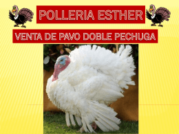 Diapositiva 1 - Polleria Esther Oficial