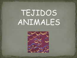 Tejidos animales - Material Curricular Libre