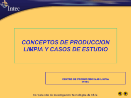 jerarquización de opciones - producción limpia