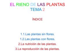 EL RIENO DE LAS PLANTAS TEMA 2