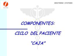 CAJA - Westwind Systems