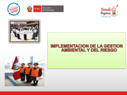 IMPLEMENTACION DE LA GESTION AMBIENTAL Y