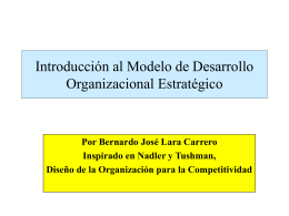 diagnostico-organizacion-enfoque-sistemico-2005