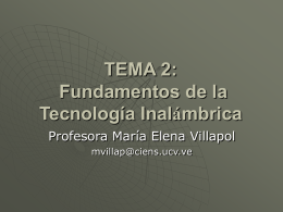 Tama II Prof Villapol