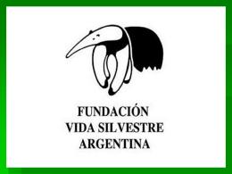 vida silvestre - JuanXXIIIciudadania3