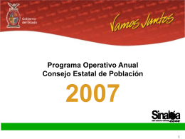 Programa Operativo Anual del 2007