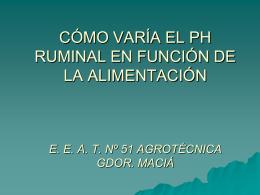 PH RUMINAL.- gonzalo S