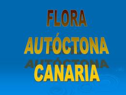 FLORA_AUTOCTONA_CANARIA[2]
