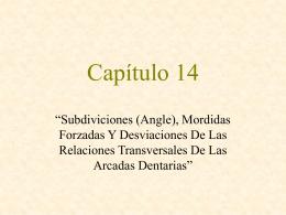 Capítulo 14 Subdiviciones (Angle)