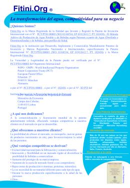 E1 - Fitini.NET ConsultinG