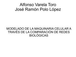 Alfonso Varela Toro José Ramón Polo López
